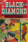 Cover For Black Diamond Western 26