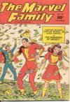 Cover For The Marvel Family 29