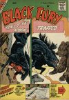 Cover For Black Fury 20
