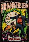 Cover For Frankenstein 33