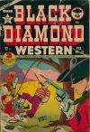 Cover For Black Diamond Western 31