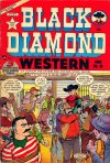 Cover For Black Diamond Western 35