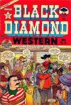 Cover For Black Diamond Western 35