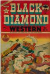 Cover For Black Diamond Western 29