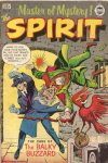 Cover For The Spirit 11