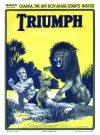 Cover For The Triumph 763