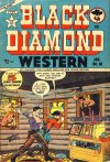 Cover For Black Diamond Western 30