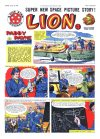 Cover For Lion 381