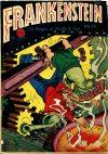 Cover For Frankenstein 14