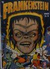 Cover For Frankenstein 18