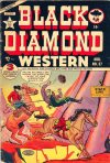 Cover For Black Diamond Western 37