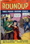 Cover For Roundup 3