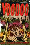 Cover For Voodoo 5