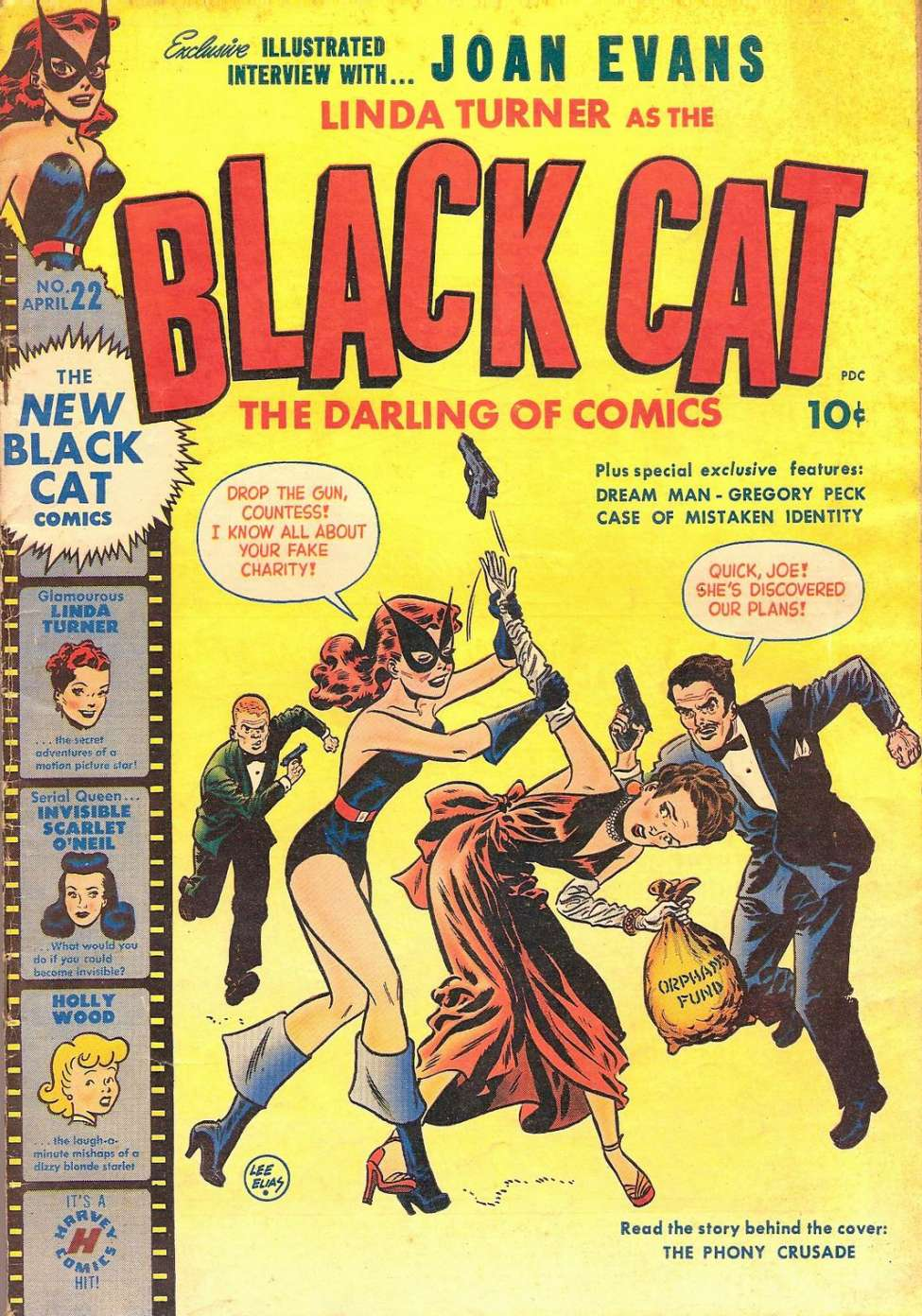 Comic Book Cover For Black Cat #22