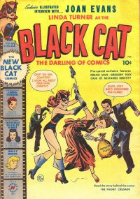 Large Thumbnail For Black Cat #22