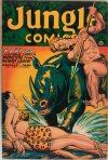 Cover For Jungle Comics 91