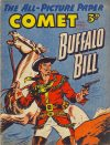 Cover For The Comet 290