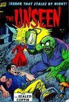Cover For The Unseen 11