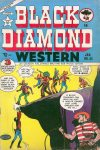 Cover For Black Diamond Western 42