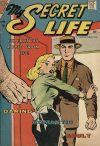 Cover For My Secret Life 20