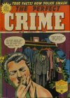 Cover For The Perfect Crime 29
