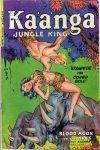 Cover For Kaanga 8