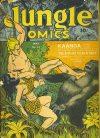Cover For Jungle Comics 41