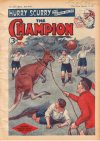 Cover For The Champion 1337