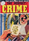 Cover For The Perfect Crime 16