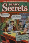 Cover For Diary Secrets 24