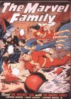 Cover For The Marvel Family 4 (fiche)
