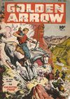 Cover For Golden Arrow 5
