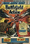 Cover For Battlefield Action 25
