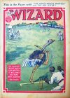 Cover For The Wizard 873