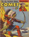 Cover For The Comet 286