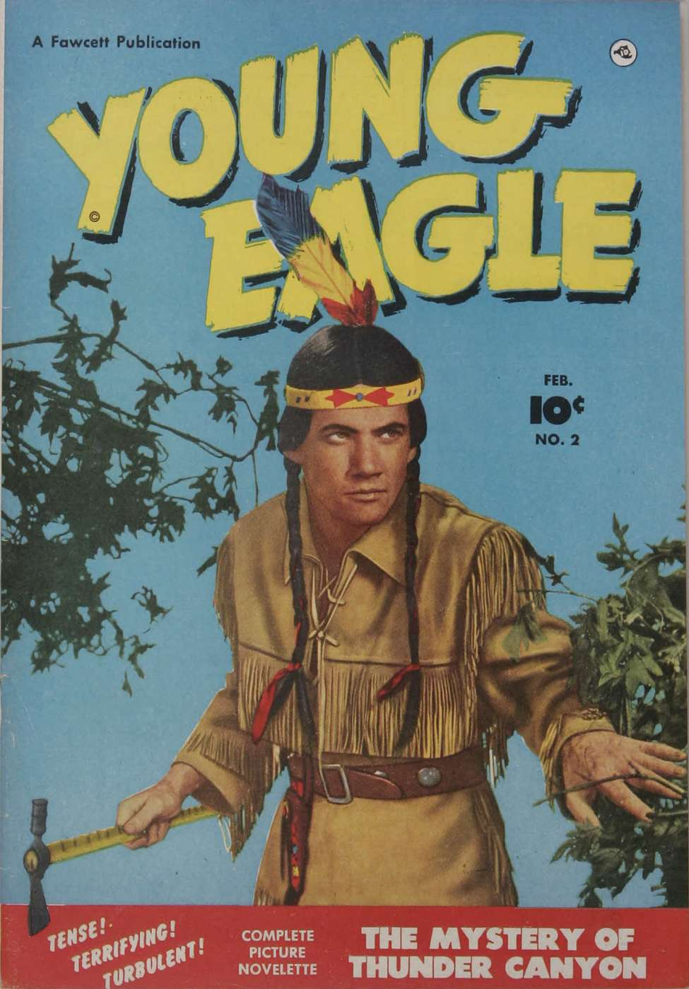 Comic Book Cover For Young Eagle #2