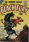 Cover For Black Fury 4