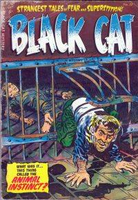 Large Thumbnail For Black Cat #52
