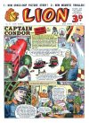 Cover For Lion 73