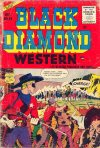 Cover For Black Diamond Western 58