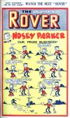 Cover For The Rover 1064