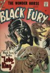 Cover For Black Fury 11