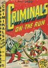 Cover For Criminals on the Run v4 3