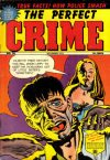 Cover For The Perfect Crime 30