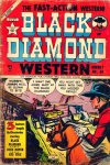 Cover For Black Diamond Western 46