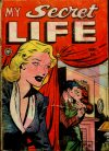 Cover For My Secret Life 27