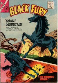 Large Thumbnail For Black Fury #48