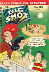 Cover For Big Shot 102