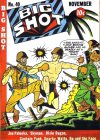 Cover For Big Shot 40