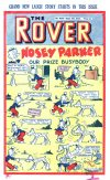 Cover For The Rover 1039